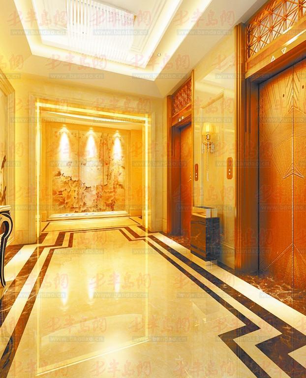 3欧式尊崇电梯间.图片
