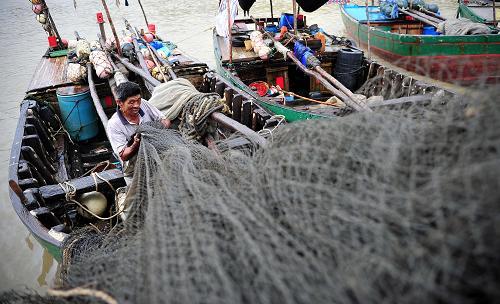 """强台风""""天兔""""来袭 渔船回港避风"""