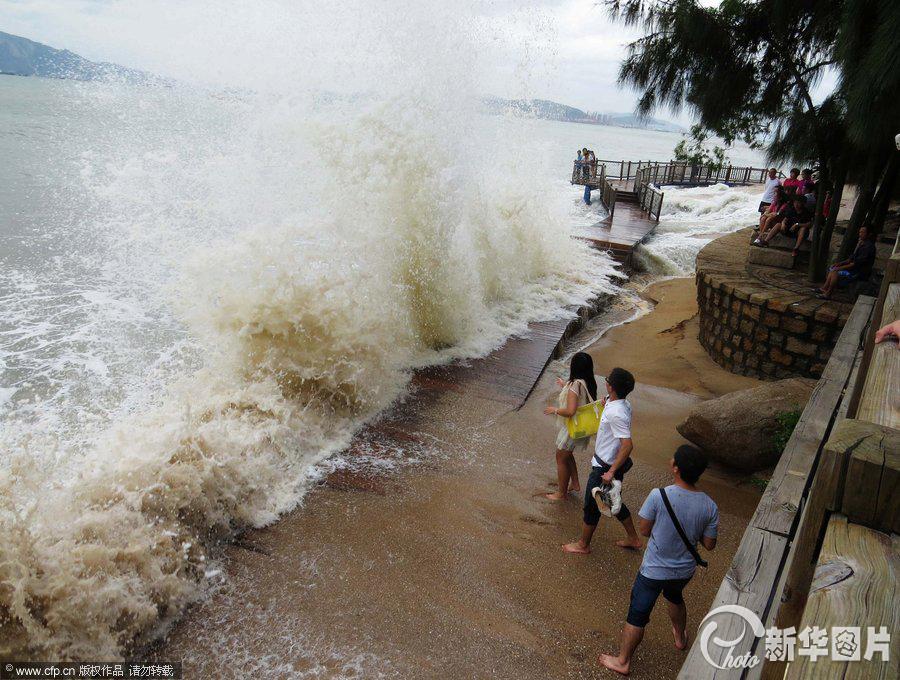 09台风天兔图片_台风天兔导致经济损失严重