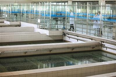 北京已投入大量资金启动自来水管网维修工程,并逐步更替一些旧管道。新京报记者 薛珺 摄