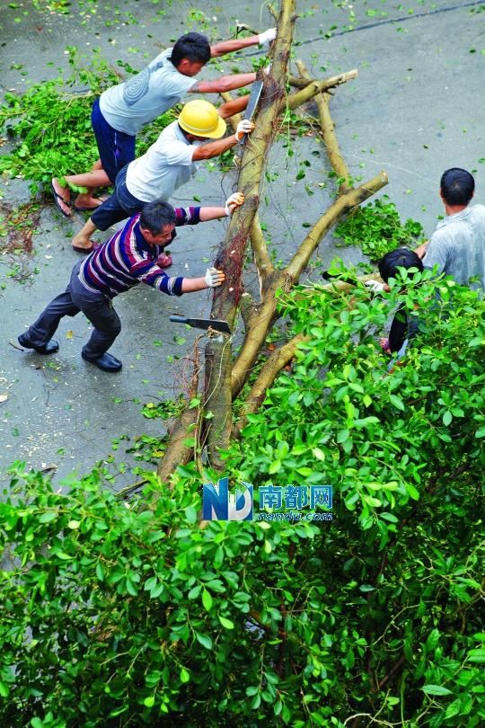 今年最凶猛台风天兔重创粤东