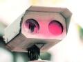盯住电子眼