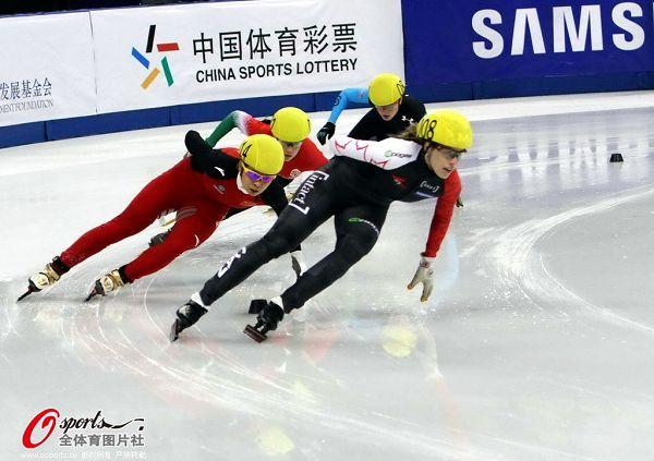 图文:短道速滑世界杯中国站 王�鞲�滑对手