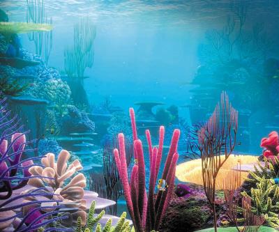 壁纸 海底 海底世界 海洋馆 水族馆 400_333