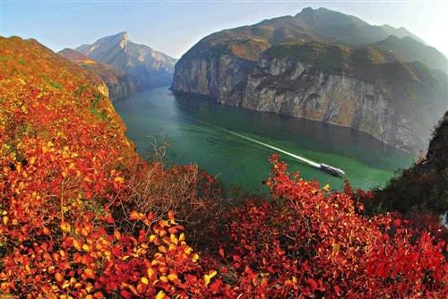 三峡船游湖北临山水视频(图)鹅苗画廊雁图片