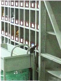 老鼠偷吃中药。(视频截图)