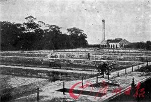 1908年 自来水用户近万家