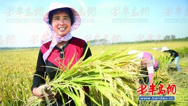 """10月16日是世界粮食日,""""发展可持续粮食系统 ,保障粮食安全和营养""""是图片"""