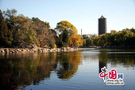教师地位排名第1 中国