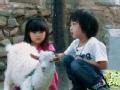 《爸爸去哪儿片花》第二期放羊篇 Cindy坐羊车 王诗龄被嫌弃