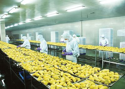 山泰食品有限公司全过程质量监控(图)
