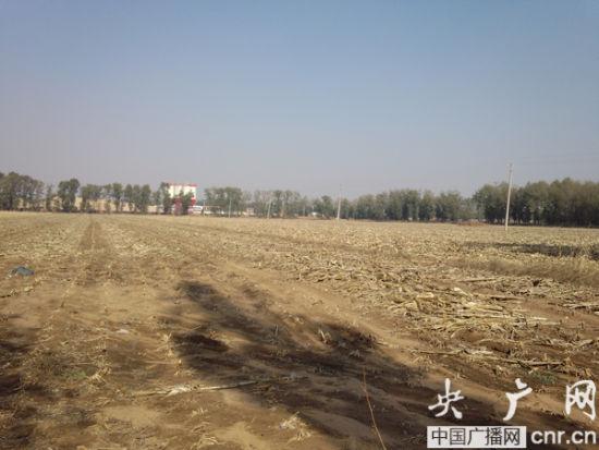 张福安村被停耕的土地复耕