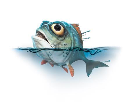 食人鱼当宠物 新物种披着宠物外衣入侵成时尚消费(组图)图片