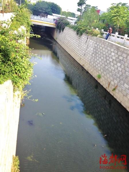 河水如墨,依旧有人淡定钓鱼