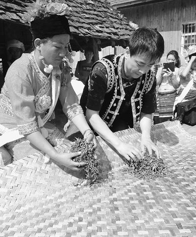 布朗族妇女教剧组演员罗钢揉茶