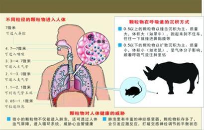 手绘空气污染与肺