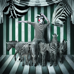 一个小丑的马戏团(组图)