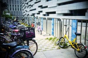 广州图书馆增设自行车免费停放区域。信息时报记者 徐敏 摄