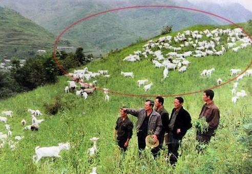 11张朝鲜假照片_朝鲜新闻假照片 感叹PS大师纷纷隐居此地(组图)-搜狐青岛