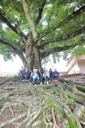 坝美,坐落于云南文山壮族苗族自治州广南县的阿科乡与八达乡交界处,是一个不足10平方公里的坝子。