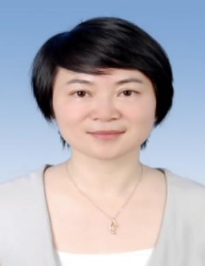 美盈森副总经理,董秘 黄琳图片