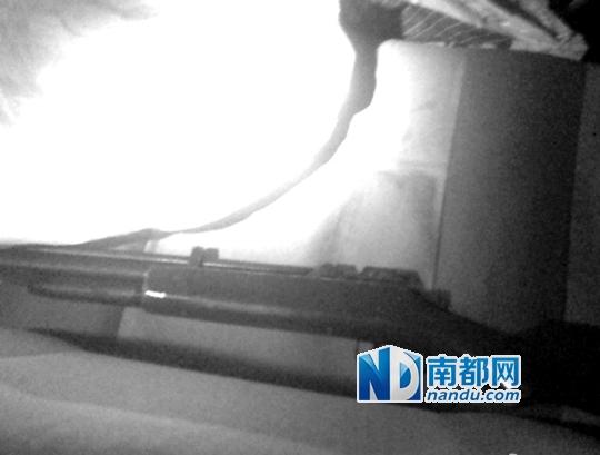 广西北海有村民称,车子日前遭当地综合执法大队砸烂,并从后者处抢来一把气枪。图片来源:@刘道艺