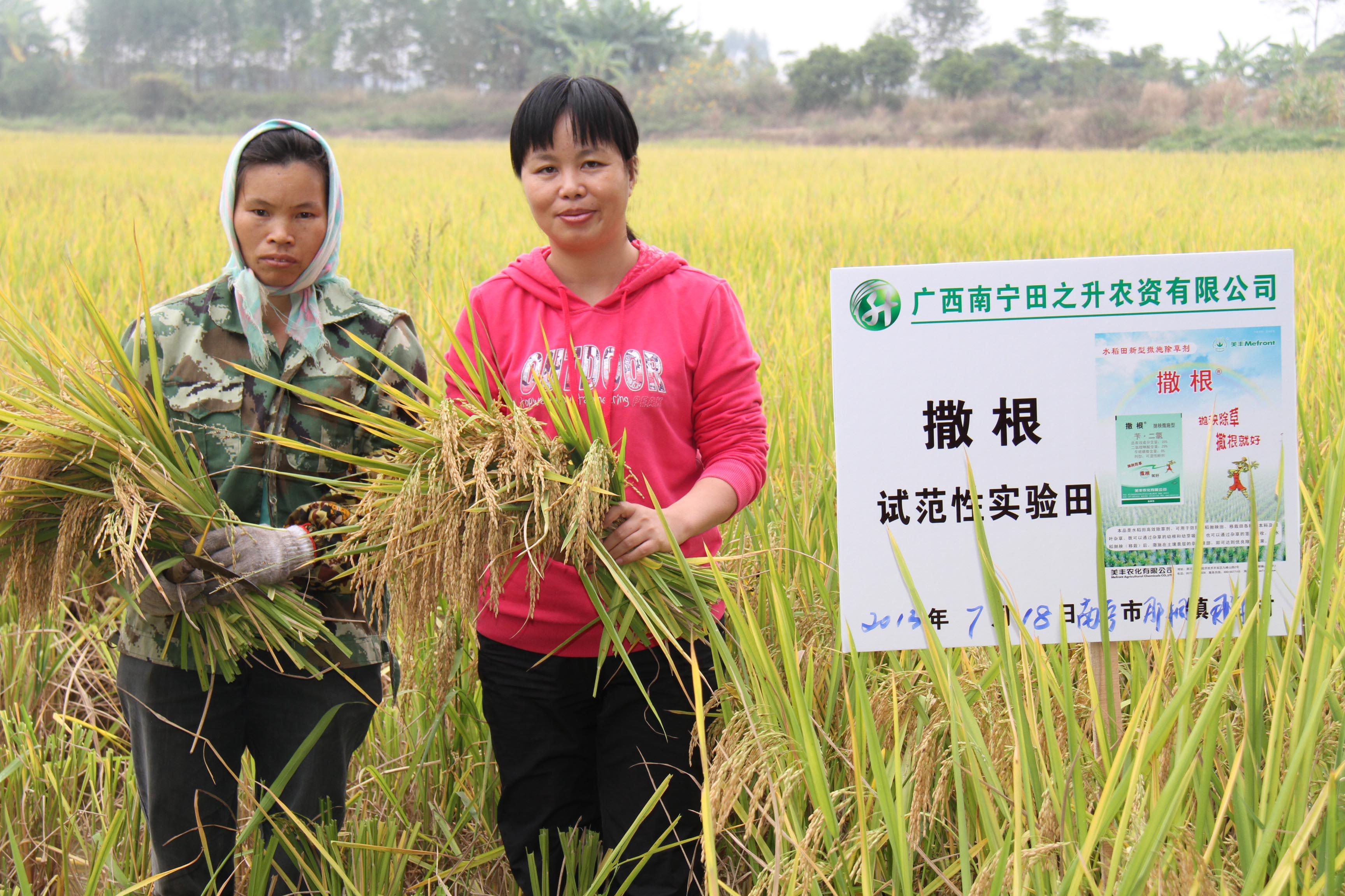 广西农业行业协会副会长单位—南宁田之升农资有限公司总经理李凯霞