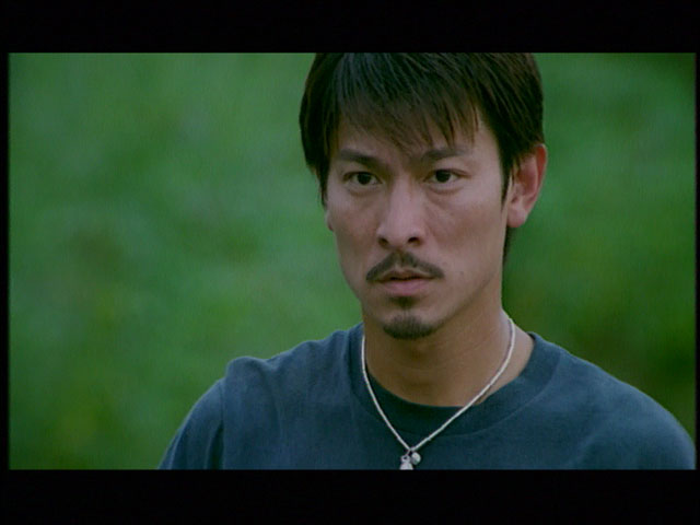 刘德华电影全集_刘德华哪部电影最后是女的在前面开车他在后面追?