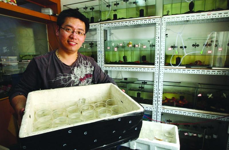 青岛小学教师仅名贵鳌虾就养了120只 书房里摆