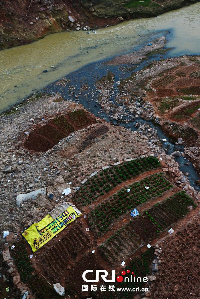 近日,有网友在红豆社区反映,南宁市邕江边的河道已经变成了某些人的