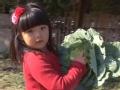 """《爸爸去哪儿片花》20131213 预告 萌娃当家看小孩 Kimi争当""""小爸爸"""""""