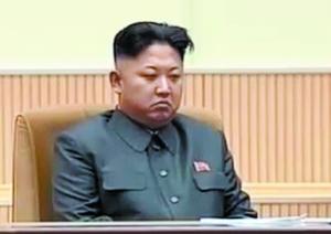 朝鲜悼念金正日逝世两周年 组图