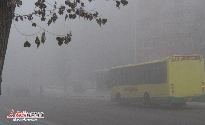 新疆维吾尔自治区团校附近的公交车站点大雾弥漫,能见度很低。罗继娜 摄