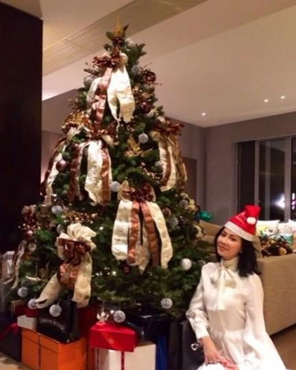 刘嘉玲首次公开豪宅内景 超大圣诞树曝光