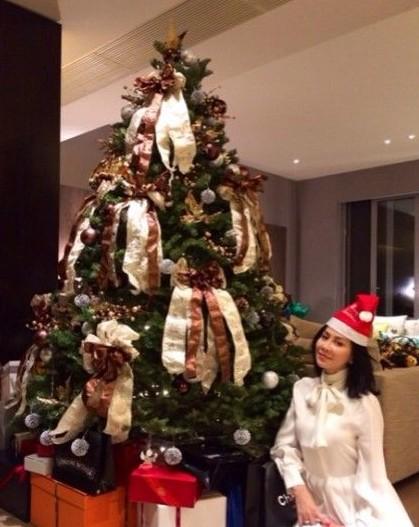 刘嘉玲家巨大的圣诞树十分抢镜