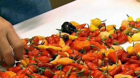 """最辣的辣椒品种""""卡罗来纳死神""""。"""