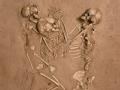 古今死亡奇案录 七千年前的谜案