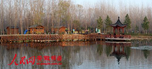 """合肥滨湖湿地森林公园荣升""""国字号""""让市民享受慢生活"""