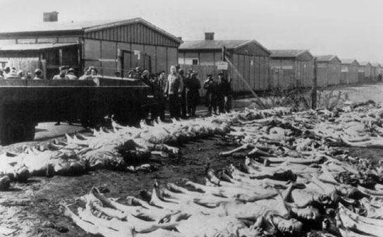二战纳粹集中营暴行(组图)