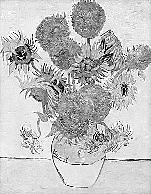梵高向日葵的赤诚(图)