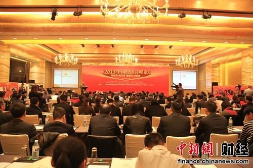 2013中国经济高峰论坛现场