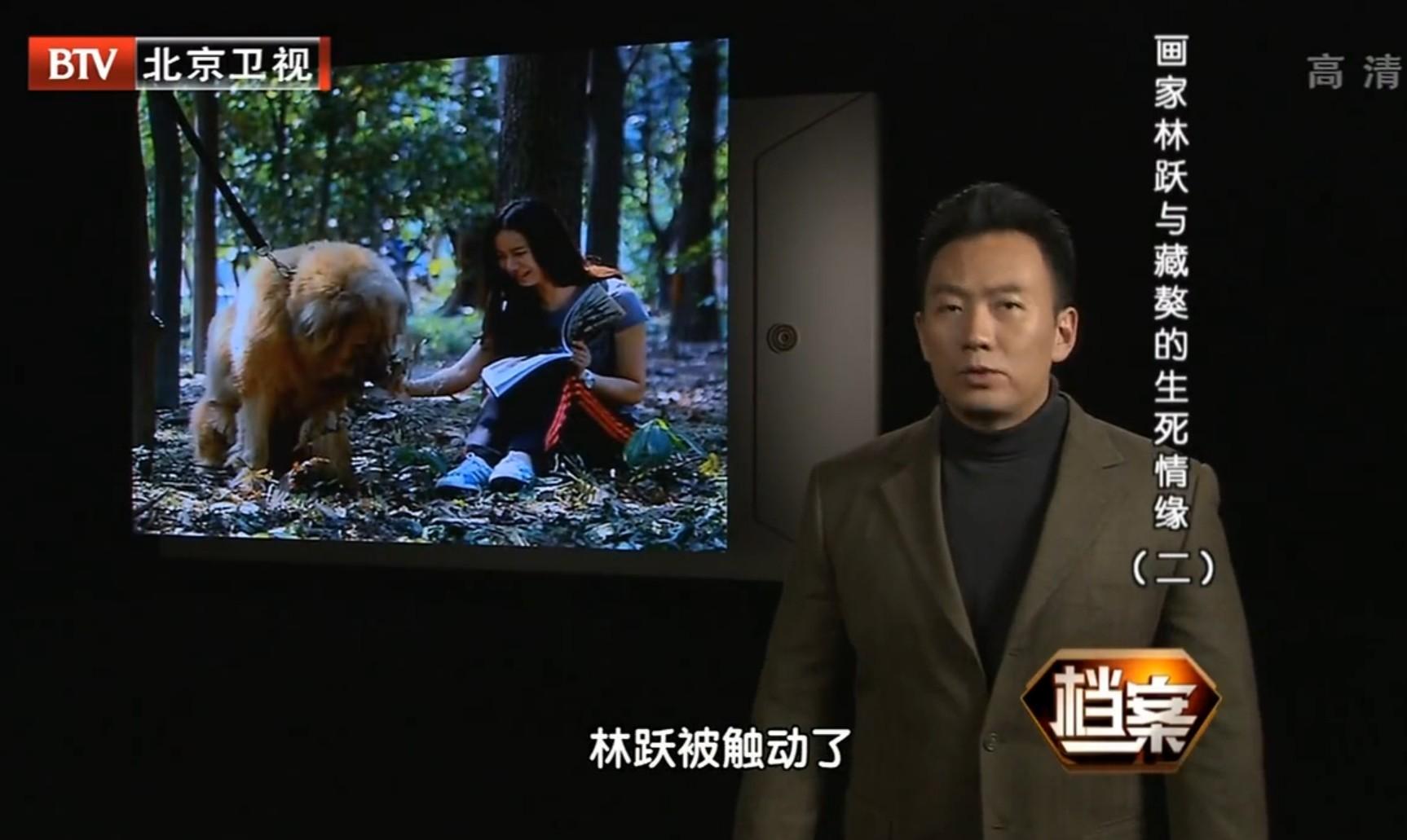 北京卫视《档案》通过解密探寻解读林跃与藏獒西巴王之间的情感缘由图片
