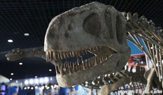 曲江海洋公园举办恐龙展 带市民穿越侏罗纪