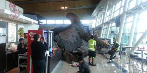 在惠灵顿机场,一座巨大的鹰雕像被震落。