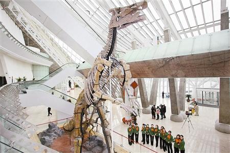 天津自然博物馆开馆_自然博物馆新馆明试开放-基本陈列免费开放微信可以语音导览