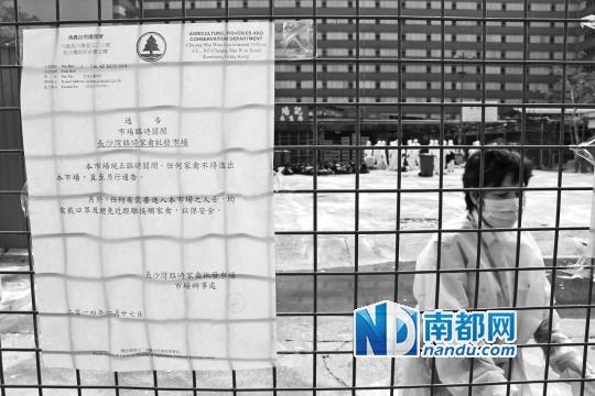 昨日起香港暂停所有活禽交易,关闭市场至2月18日。 南都记者 康殷 摄