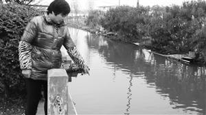 吴女士是听到呼救后第一个赶到的人。她说,当时老人就掉进这条河里 记者 吴依滢 摄