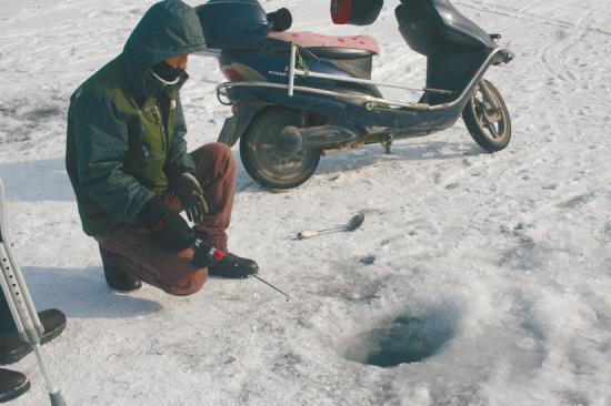 丁香湖垂钓 观赏鱼遭殃