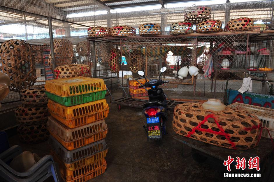 2月15日,广州江村家禽批发市场内的商户全部歇业,商铺内整齐摆放着图片