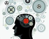 最强大脑探索记
